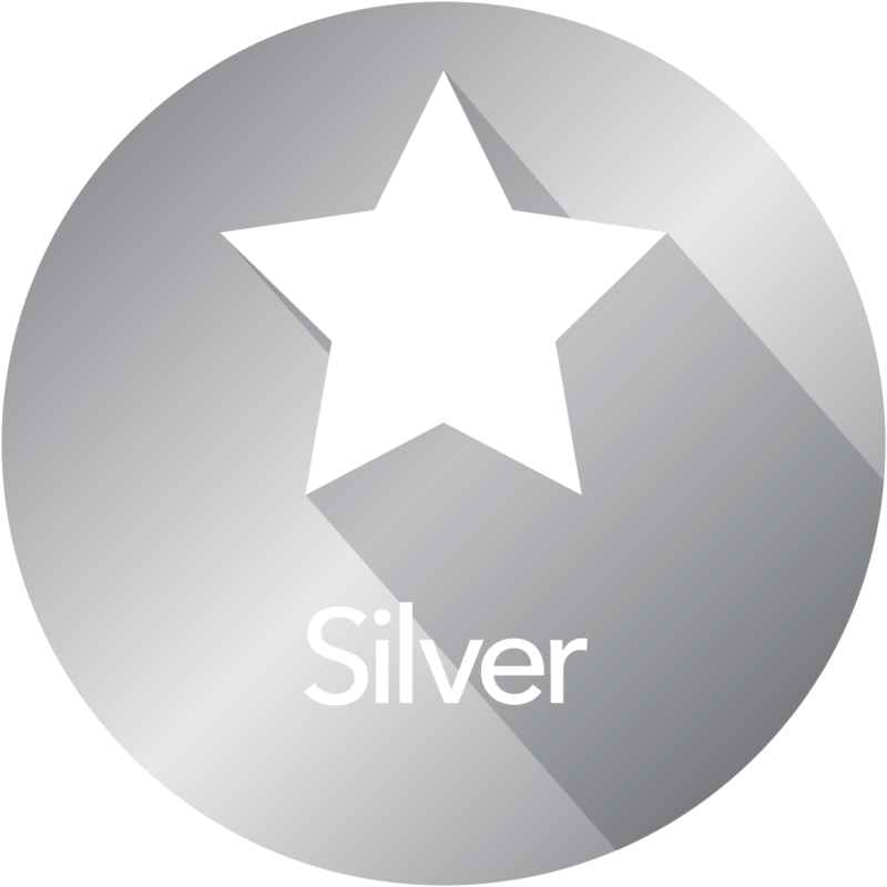 silver subscription